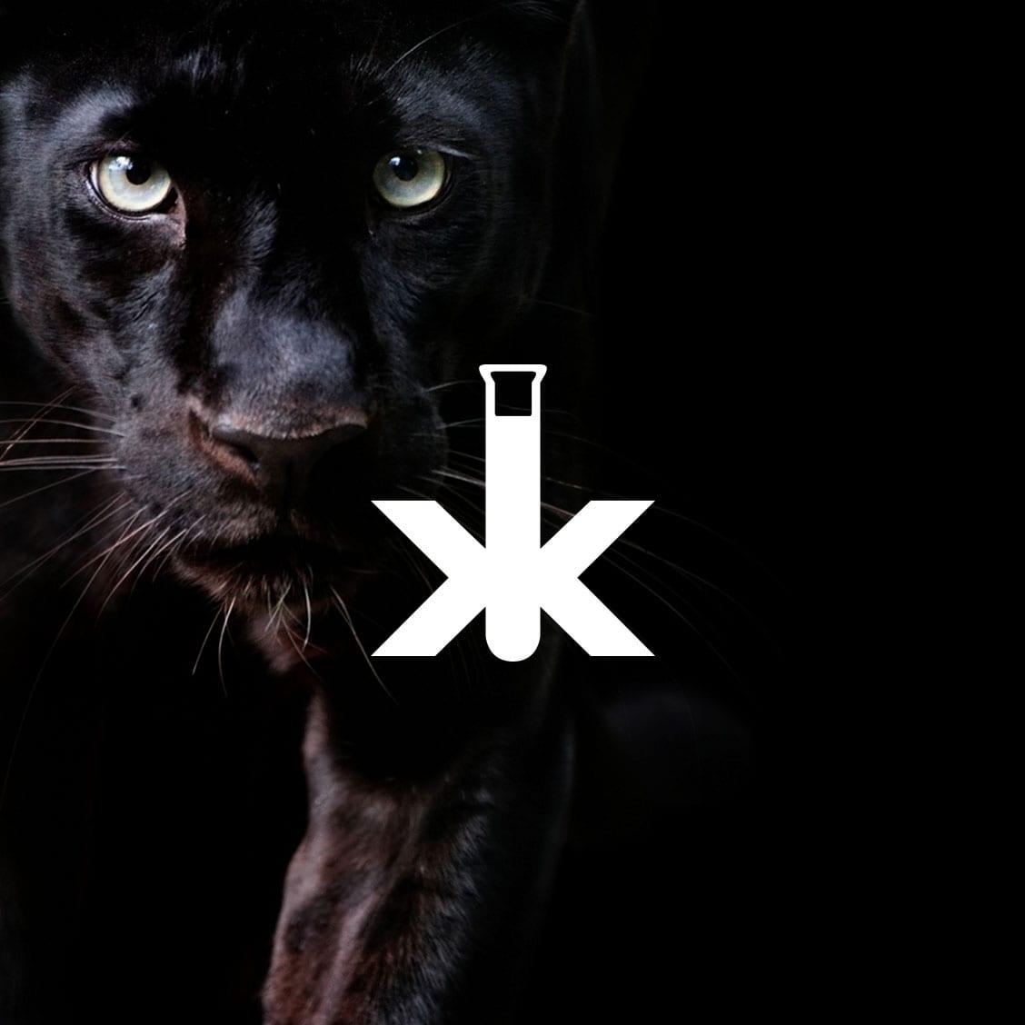 Case-Kachel Kiesow