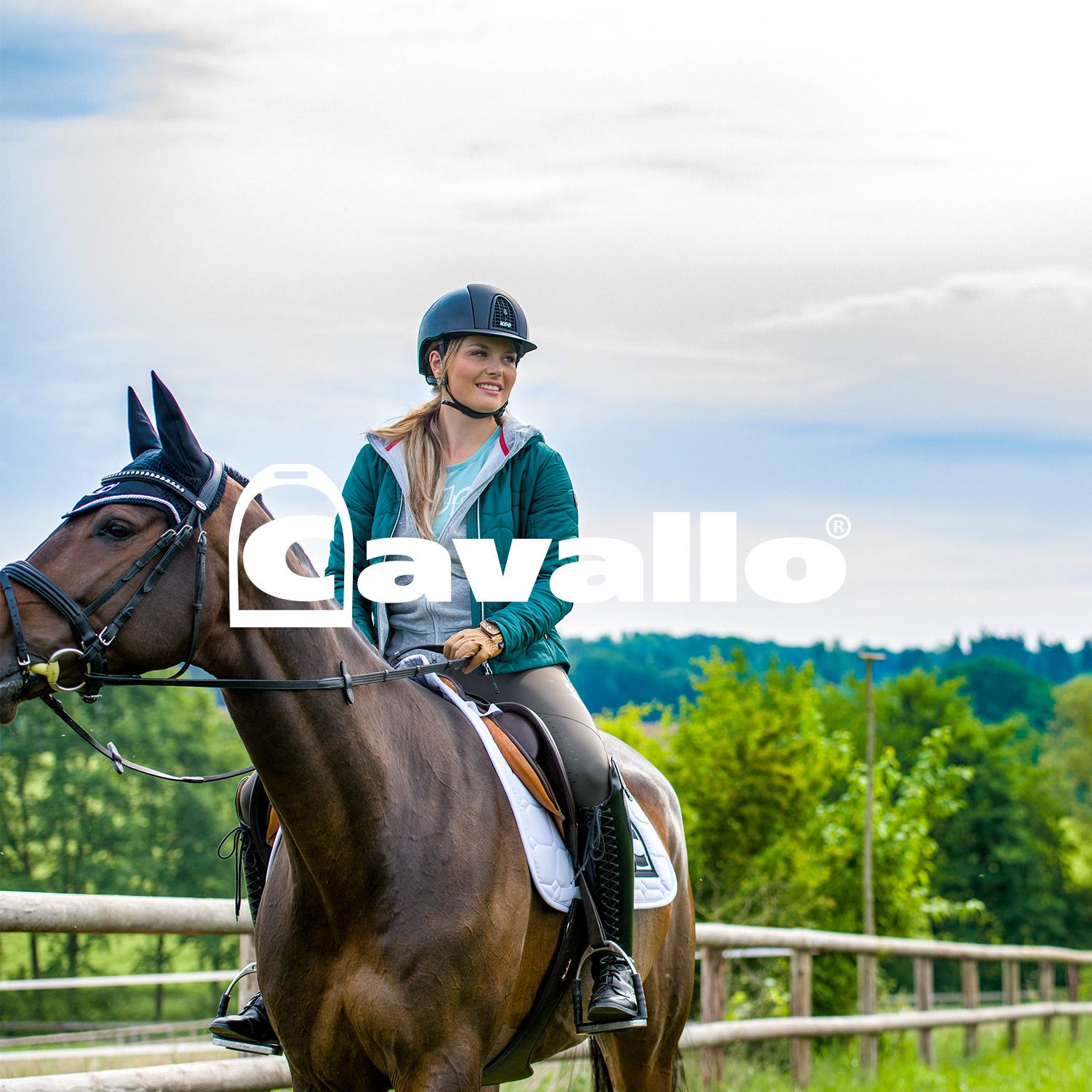 Case zur Kampagnenarbeit mit Cavallo